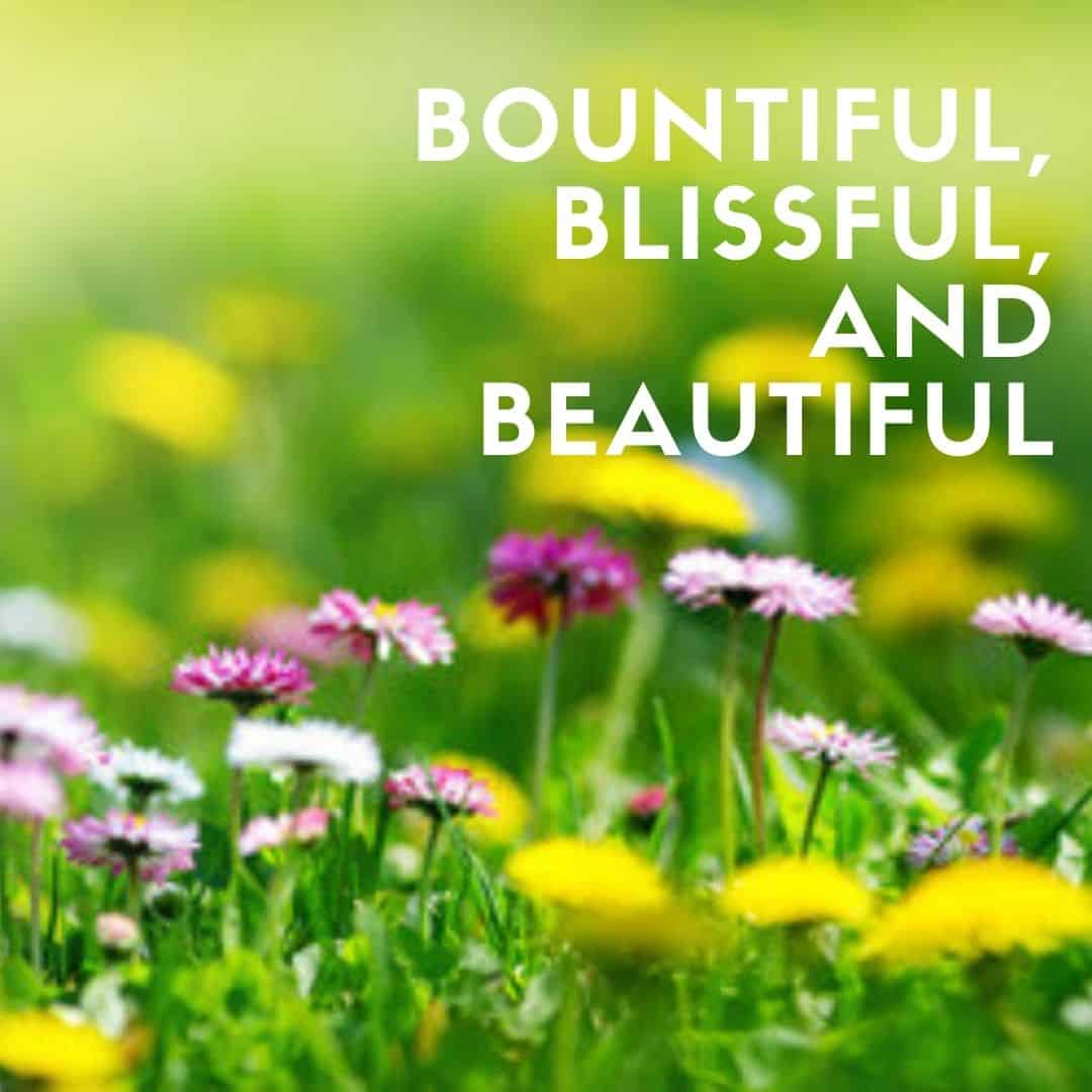 bountiful, blissful, and beatiful