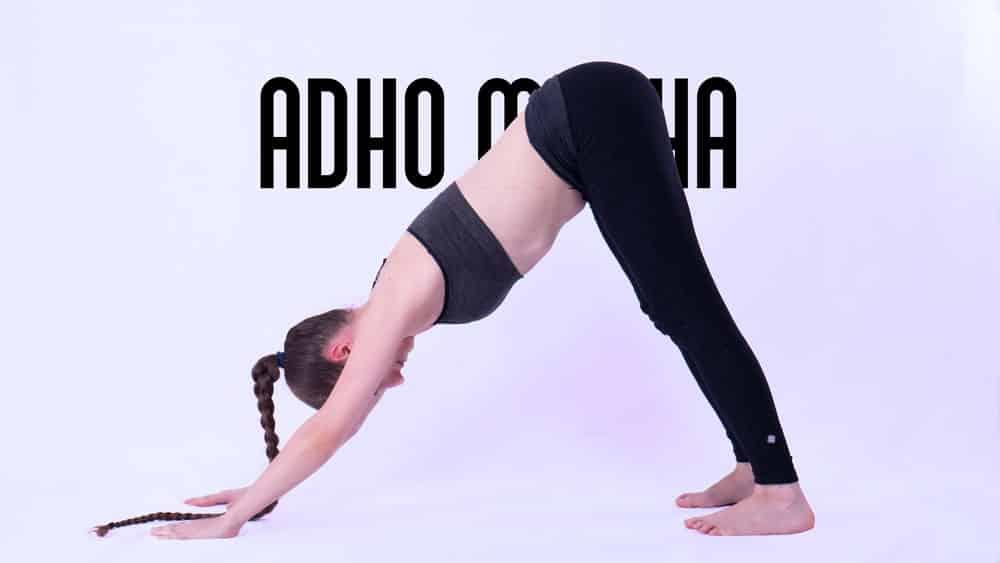 adho mukha