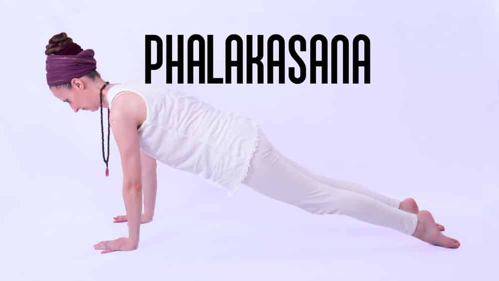 phalakasana